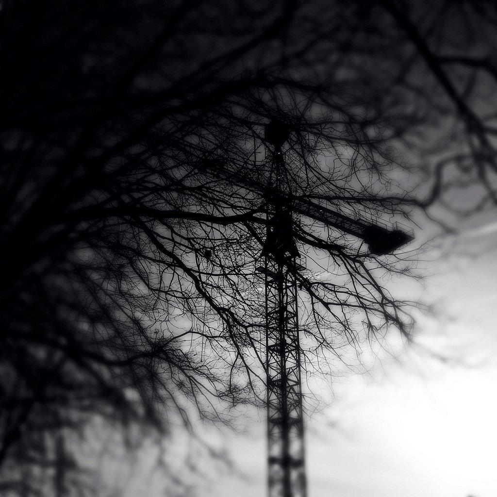 IMG-2405.jpg